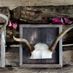 Reclaimed Wood Boxes & Frames